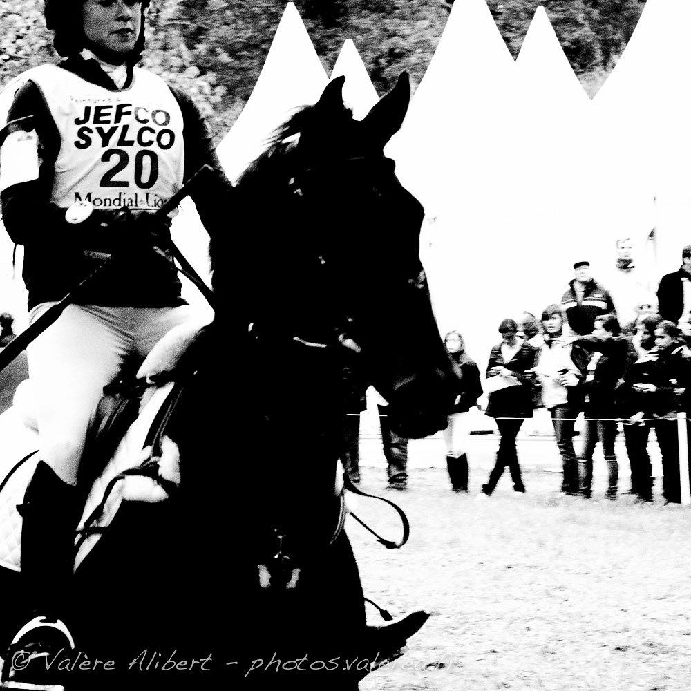 Noir et blanc, cheval et cavalier