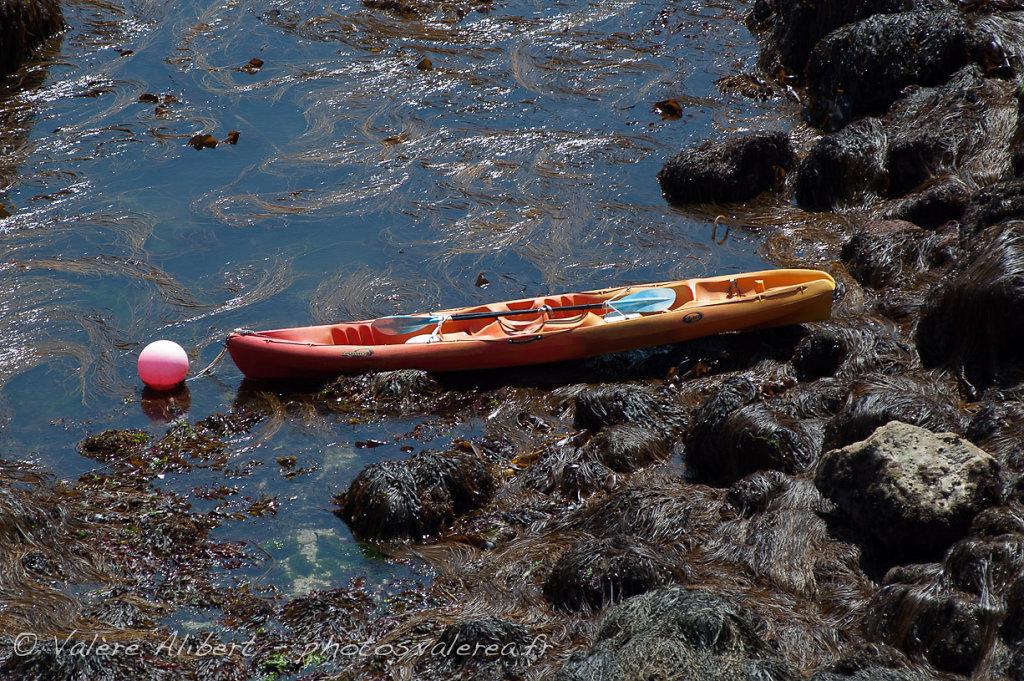 Kayak égaré, côte sud...
