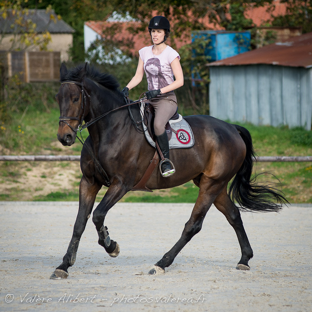 Jolie poney, jolie cavalière